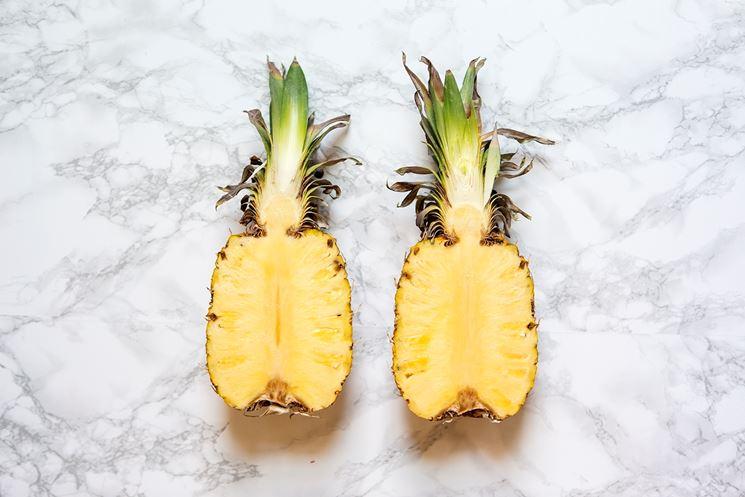 ananas propriet�