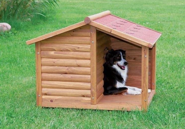 casetta in legno per cani