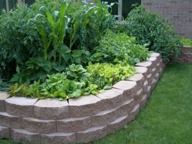 Luxurious And Splendid Raised Bed Garden Layout Vegetable Layouts 911398c2b122d52a likewise Diy Raised Bed Trellis as well Wicking Bed Construction likewise 8420 moreover 12945. on garden designs with raised beds