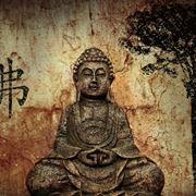 zen significato