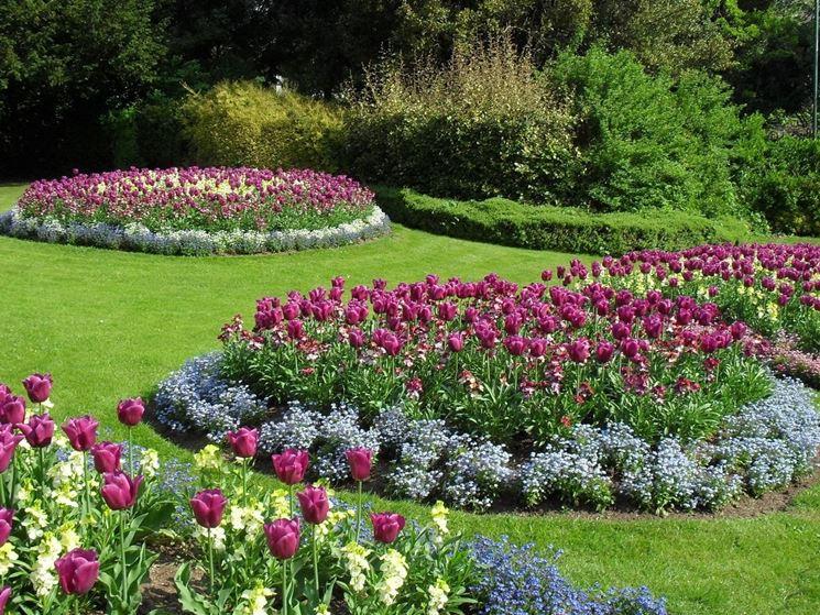 aiuole per giardino fiori e piante : Le aiuole fiorite