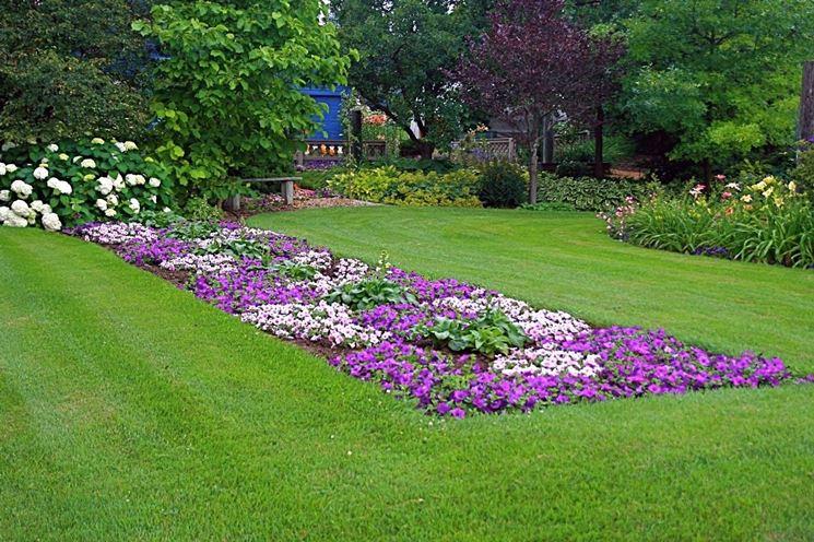 fiori da giardino giardino fiorito : giardino fiorito