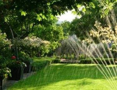 Innaffiatura giardino
