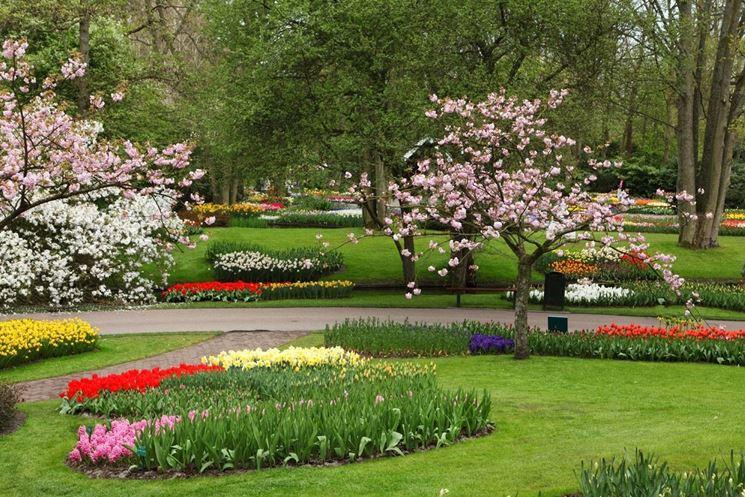 Manutenzione giardini giardinaggio for Manutenzione giardini