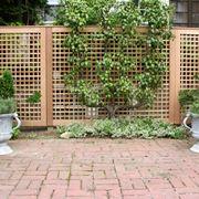 Divisori per giardini grigliati e frangivento - Separe da esterno ...