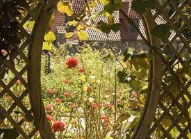 Grigliati giardino
