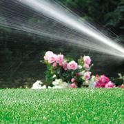 irrigare giardino