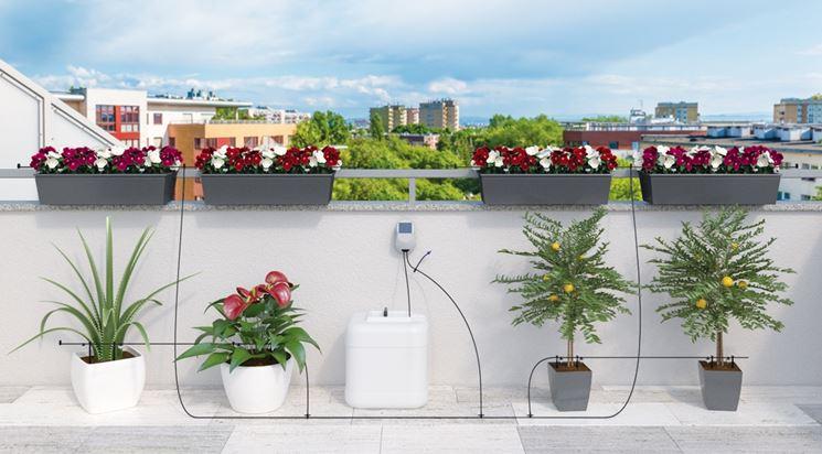 Annaffiatoio addio arriva aqua magic system irrigazione for Sistema irrigazione a goccia