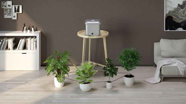 irrigazione claber per piante da interno