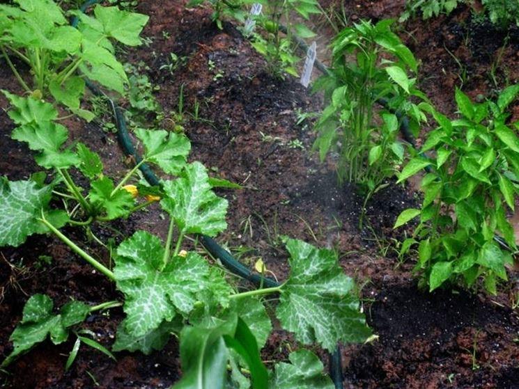 impianti irrigazione fai da te