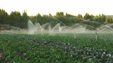 impianto interrato per l'irrigazione
