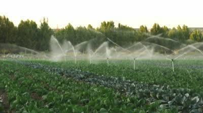 Irrigazione orto irrigazione come irrigare l 39 orto for Kit irrigazione automatica