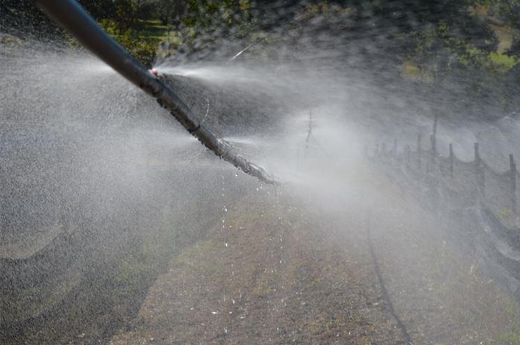 Irrigazione per nebulizzazione
