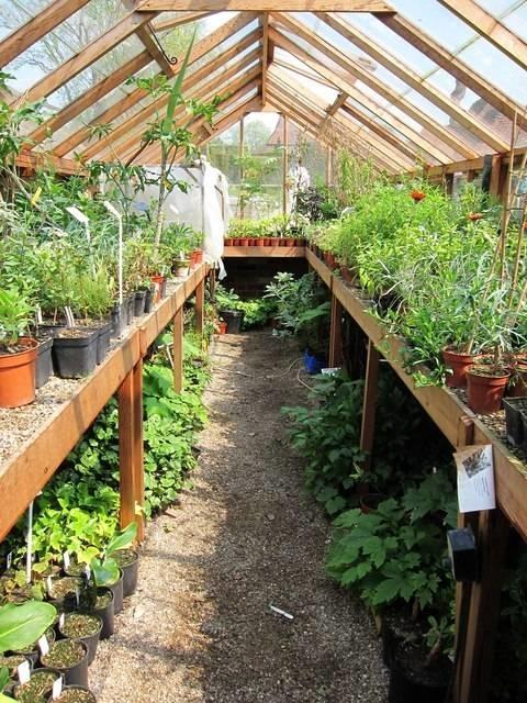 Costruire una serra pergole tettoie giardino come - Progetto di un giardino ...