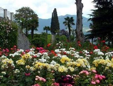 Disegno giardino progettazione giardino - Disegnare un giardino ...
