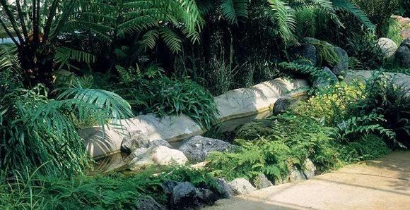 Disegno giardino progettazione giardino for Disegnare un giardino