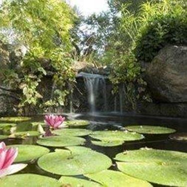 giardino d acqua