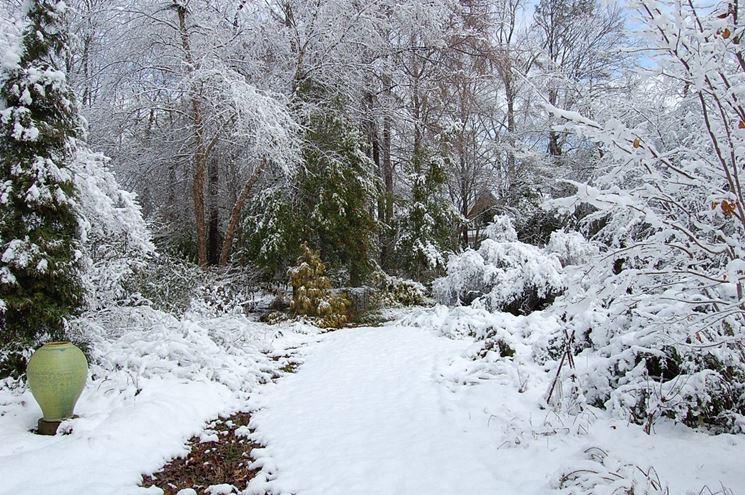 Giardini di inverno progettazione giardino - Giardino di inverno ...