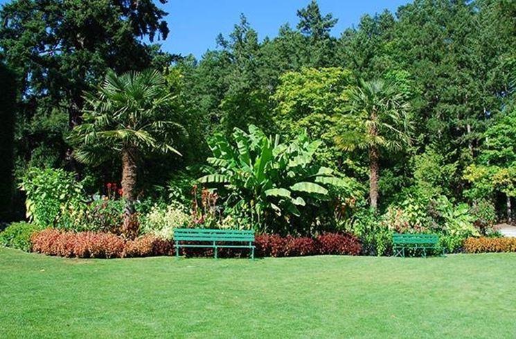 giardini mediterranei progettazione giardino giardini