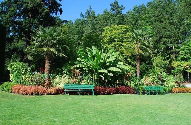 giardini mediterranei tipi di giardini come creare un