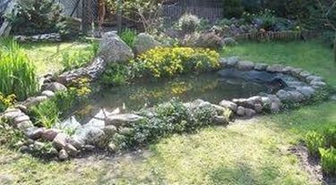 Laghetti da giardino progettazione giardino Setting up fish pond
