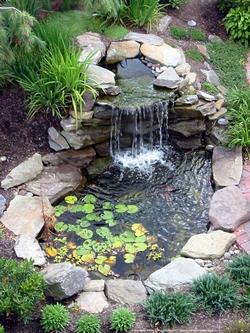 Laghetti da giardino progettazione giardino - Laghetti da giardino in cemento ...
