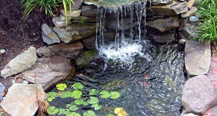 Laghetti da giardino progettazione giardino for Laghetti per tartarughe prezzo