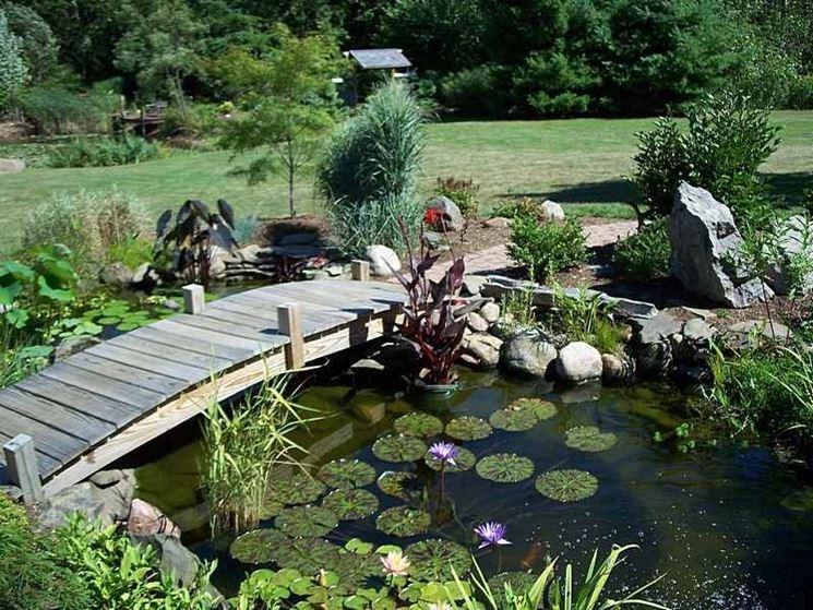 Laghetti da giardino progettazione giardino for Cascate per laghetti da giardino