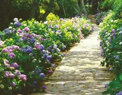 Pavimenti per giardini progettazione giardino for Pietre piatte per giardino