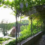 Progettazione giardino progetto per il terrazzo for Terrazzo giardino progettazione