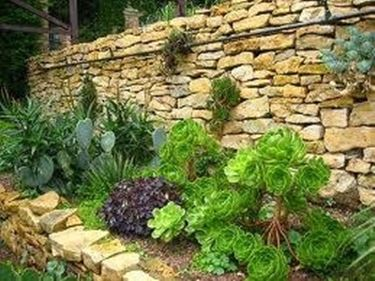 Sistemazione giardini progettazione giardino - Giardini mediterranei ...