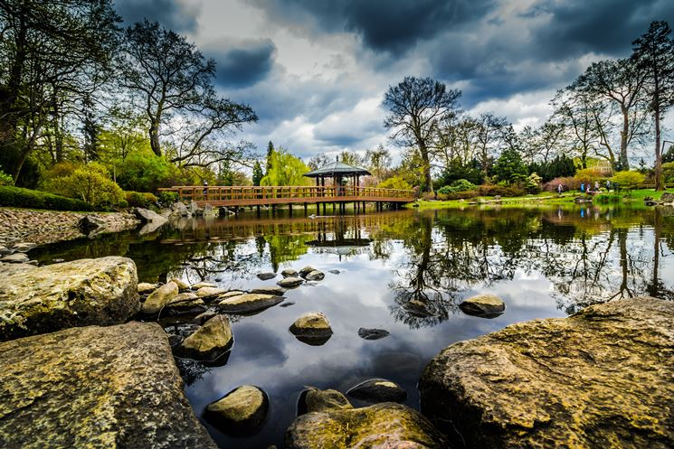 Stagno progettazione giardino laghetto giardino for Stagno giardino