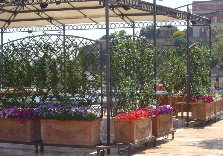 Fioriere ferro battuto fioriere fioriere ferro battuto for Arredo giardino ferro battuto