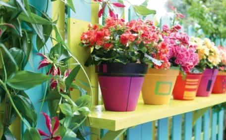 vasi da balcone - vasi - vasi adatti ai balconi - Vasi Di Plastica Colorati Per Piante