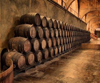 Attrezzi olio e vino