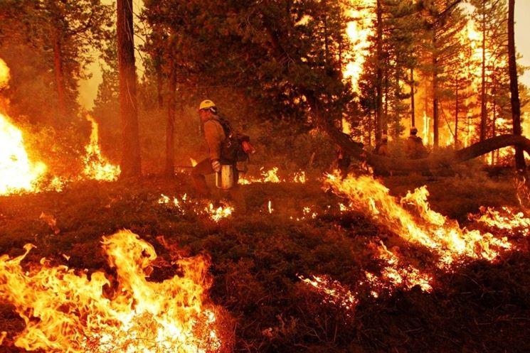 <i>incendio Regard-Sur-La-Terre</i>