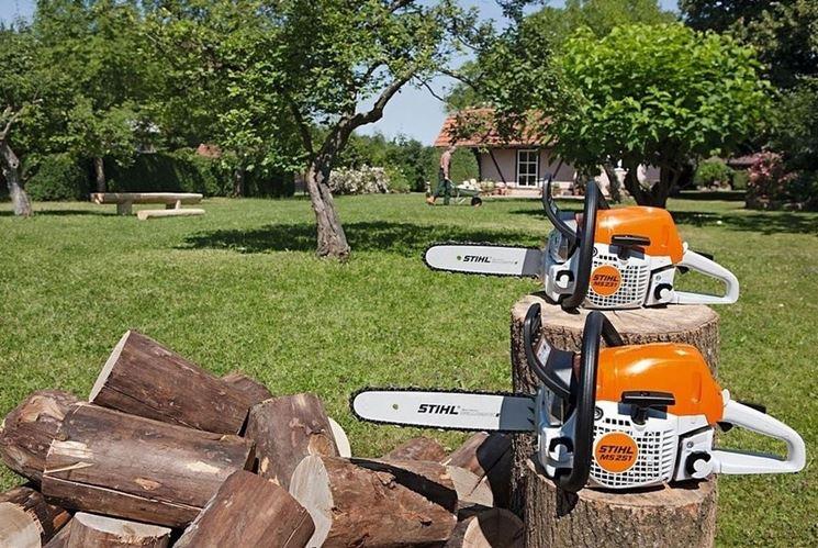 Motoseghe per la legna