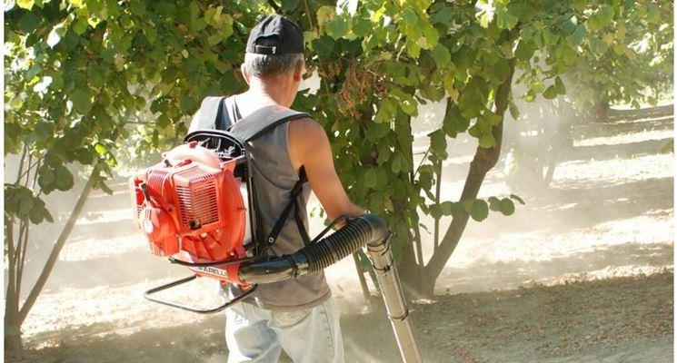 Operatore con soffiatore a spalla