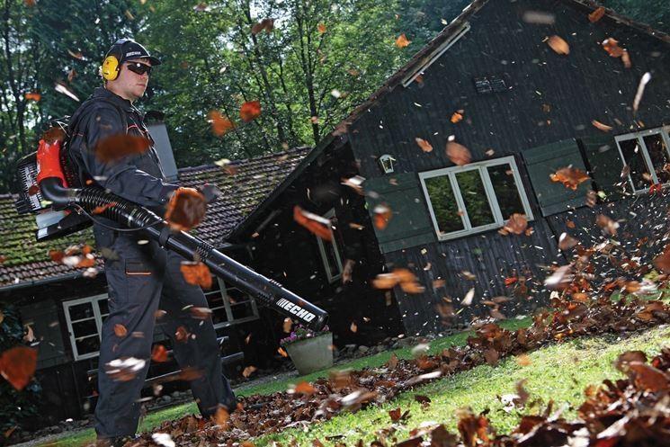 soffiatore per foglie a mano