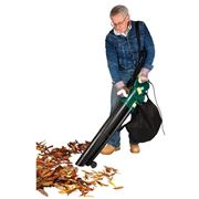soffiatore foglie