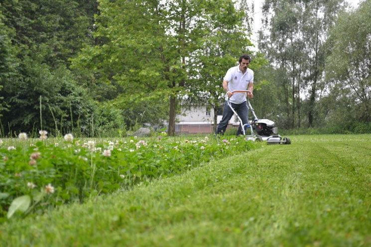 tagliaerba grin per giardino