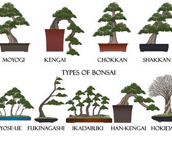 Stili Bonsai