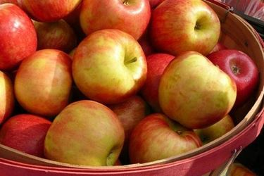 La mela, un frutto curativo per eccellenza.