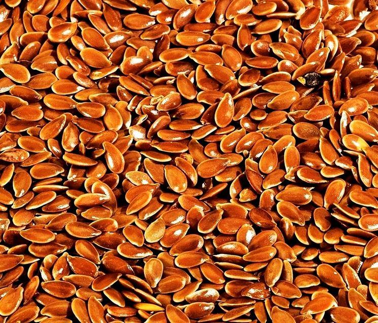 Tipi di semi di lino