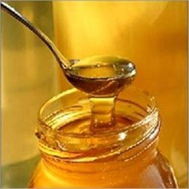 miele di eucalipto