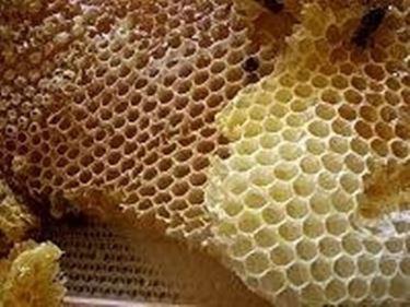 produrre miele