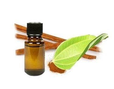 olio essenziali cannella