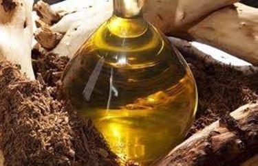 olio essenziale sandalo