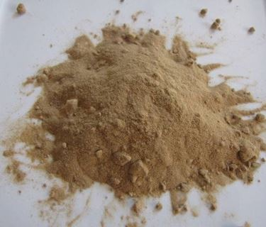 polvere amla