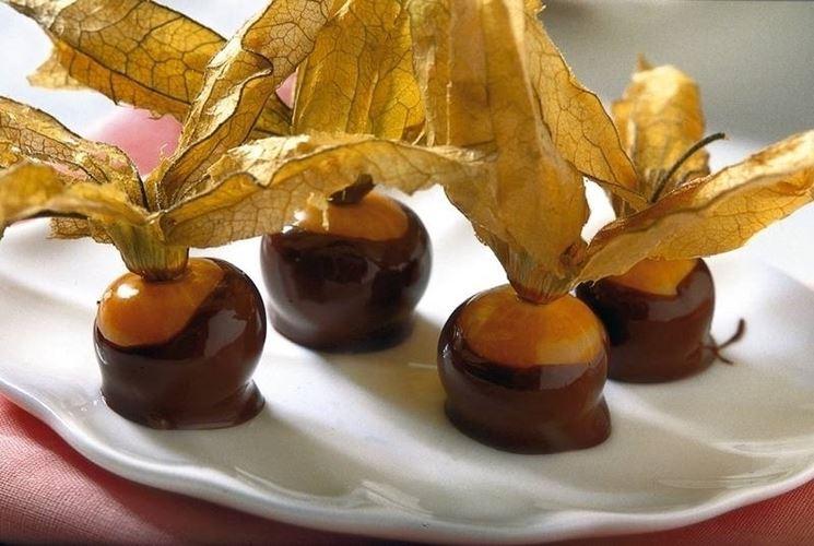 alchechengi al cioccolato